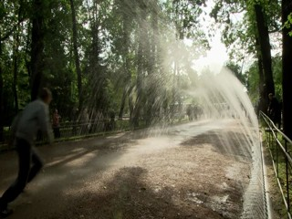 The Fountains of Peterhof