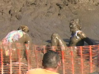 Pig Wrestling - 2006 Thresheree